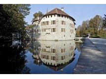Schloss Hallwyl, Museum Aargau, Seengen