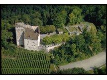Schloss Habsburg, Museum Aargau, Habsburg