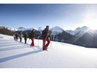 Tages-Schneeschuhtour mit Biologe Lukas Barth