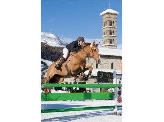 59. Concours Hippique St. Moritz