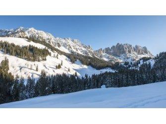 Europa-cup Skirennen in Jaun