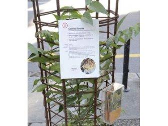 Ausstellung Exotische Problempflanzen