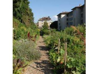Du Jardin botanique de Lausanne à la Ferme des Tilleuls à Renens