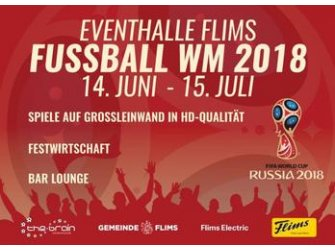 The Brain Fussball WM 2018 Public Viewing